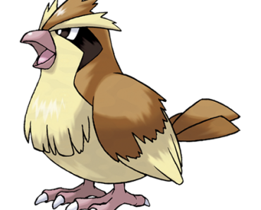 pokemon-016-pidgey
