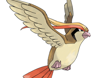 pokemon-018-pidgeot