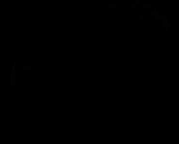 Pokemon Silhouette 045 Vileplume