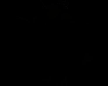 Pokemon Silhouette 085 Dodrio