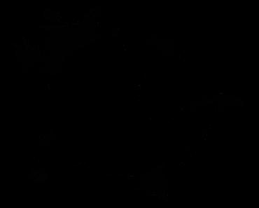 Pokemon Silhouette 112 Rhydon
