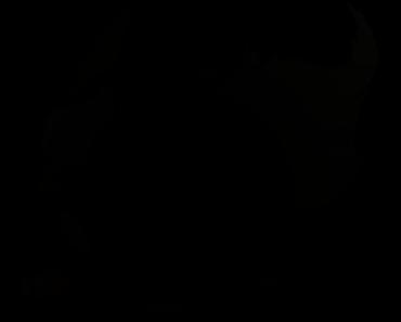 Pokemon Silhouette 136 Flareon