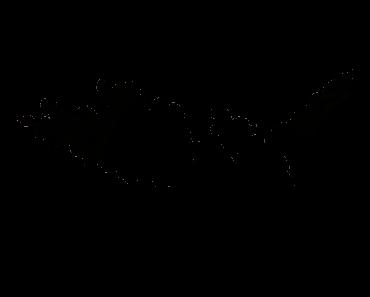 Pokemon Silhouette 146 Moltres
